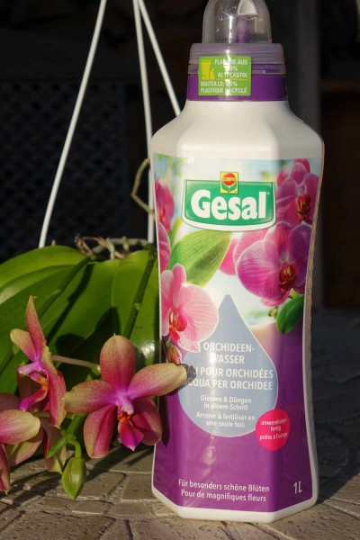 Orchideenwasser Gesal