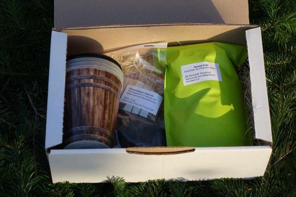 Geschenkbox / Aufzuchtsbox