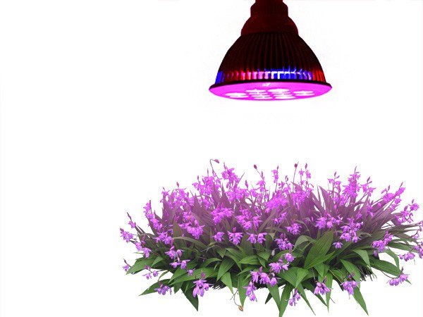 Pflanzenlampe Tao Tronics 12